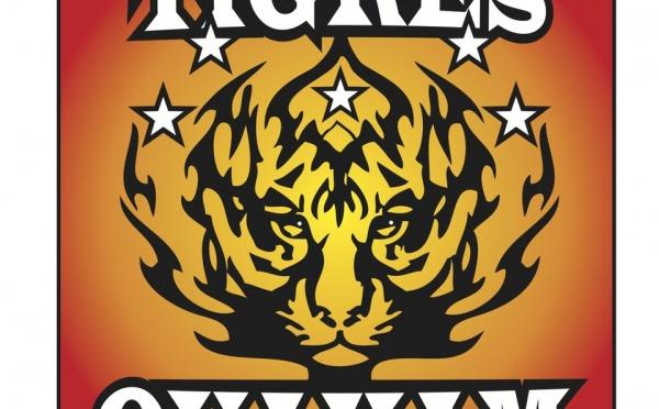 Fiche de présentation des Tigres de Ouakam