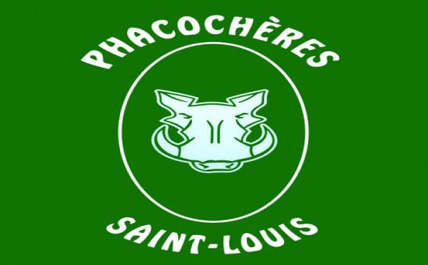 Fiche de présentation des Phacochères de Saint-Louis
